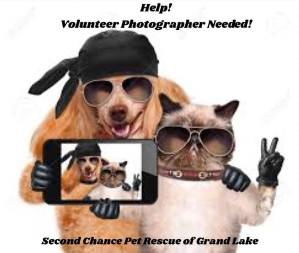 Volunteer Photographer Needed at Second Chance Pet Rescue